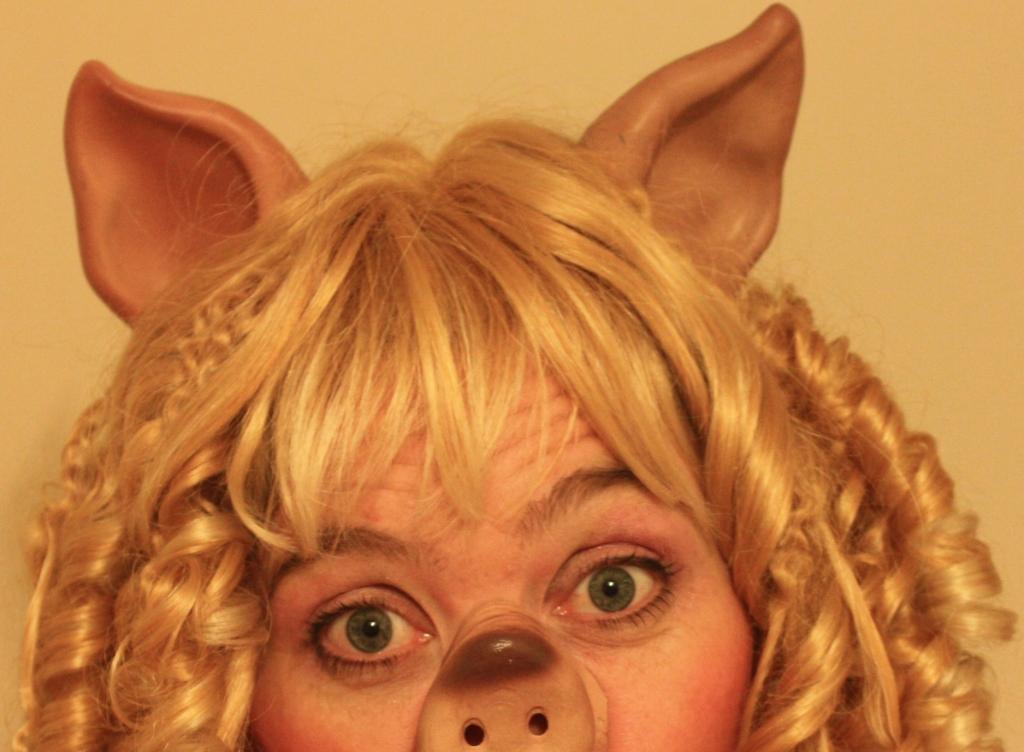 FF_Schweine_002